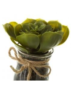 Dispensador con Estropajo Floral Market